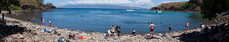 Maui's Best Snorkeling for Turtles Beaches - Honolua Bay