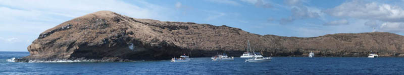 Maui's Best Snorkeling for Coral Beaches - Molokini