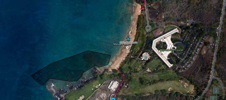 Turtles All Way Down >> Maui Snorkel Guide Maluaka Beach