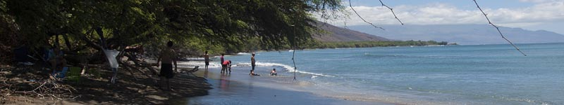 Maui's Best Snorkeling for Coral Beaches - Olowalu bay